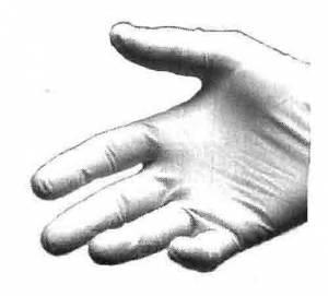 VIGOR-96 - Light Weight Cotton Gloves  12-Pack